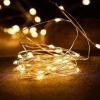 Гирлянда Роса LED30 теплый белый 3м